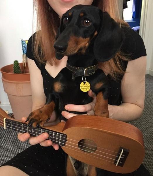 Caz-Watts-Hank-Talented-Pet